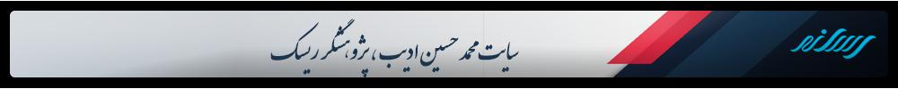 سایت محمد حسین ادیب ، پژوهشگر ریسک