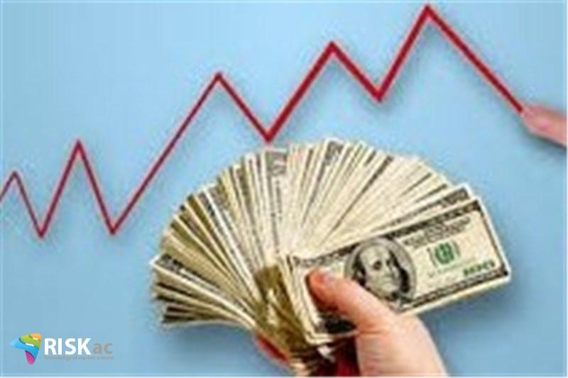 فعال اقتصادی چگونه نوسانات ارز را پوشش دهد