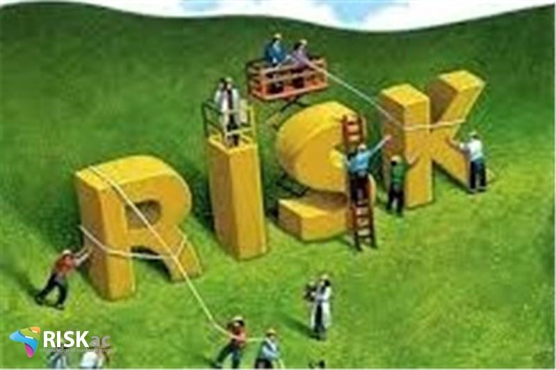 ریسک زده ها در کسب و کار