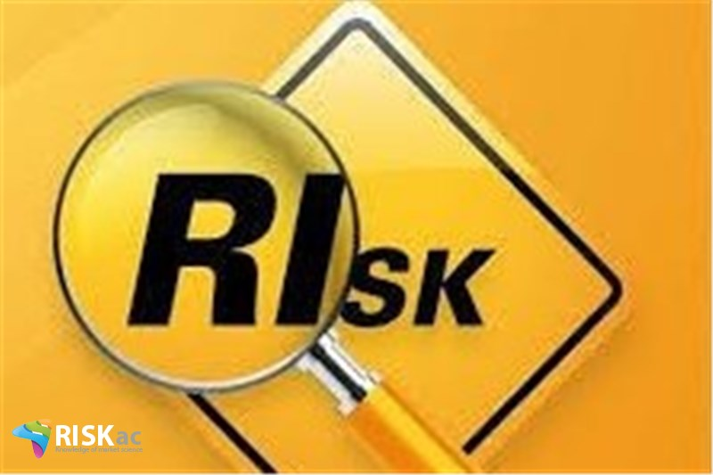 ریسک ها را در اقتصاد چه کسانی می خرند