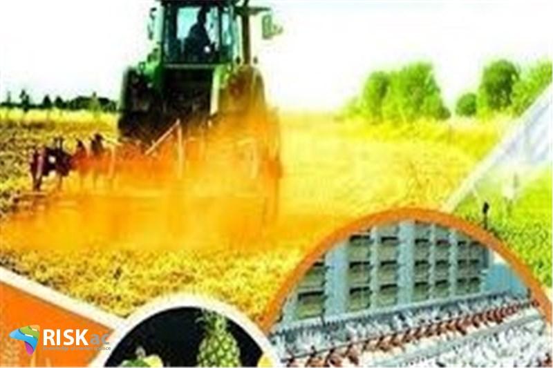 بخش مسکن و اقتصاد کشاورزی