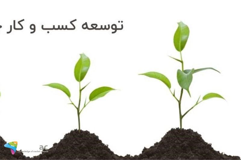 توسعه در کسب و کار به چه معناست